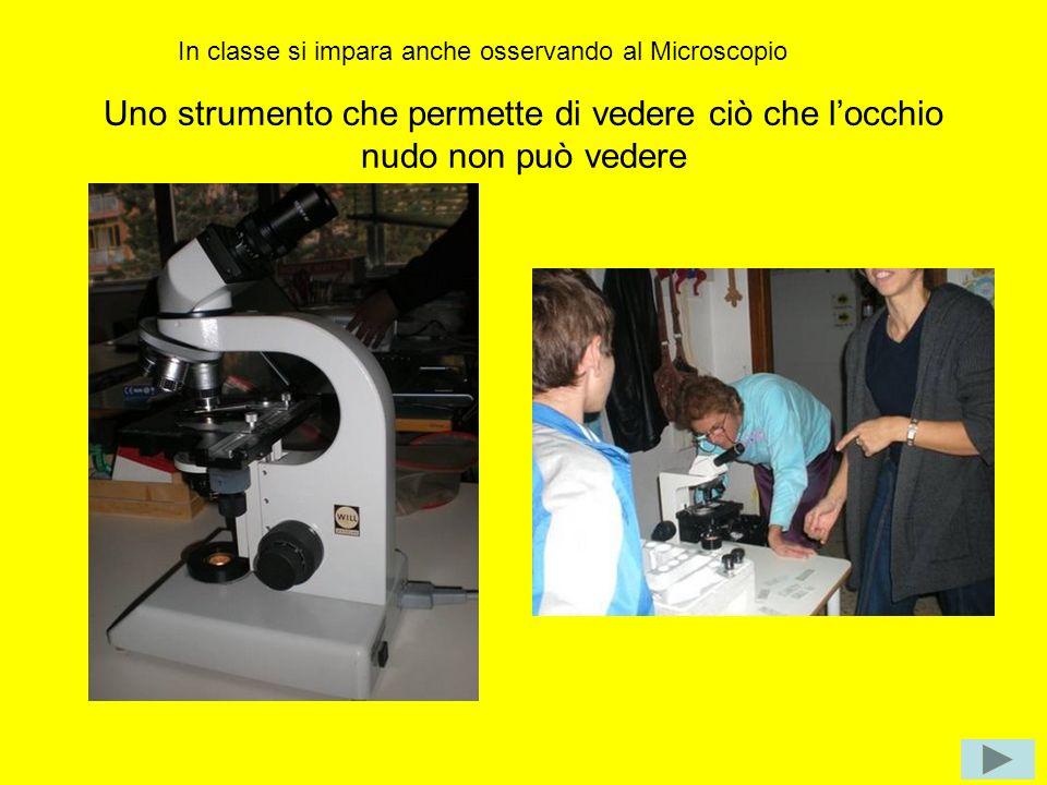 Uno strumento che permette di vedere ciò che locchio nudo non può vedere In classe si impara anche osservando al Microscopio