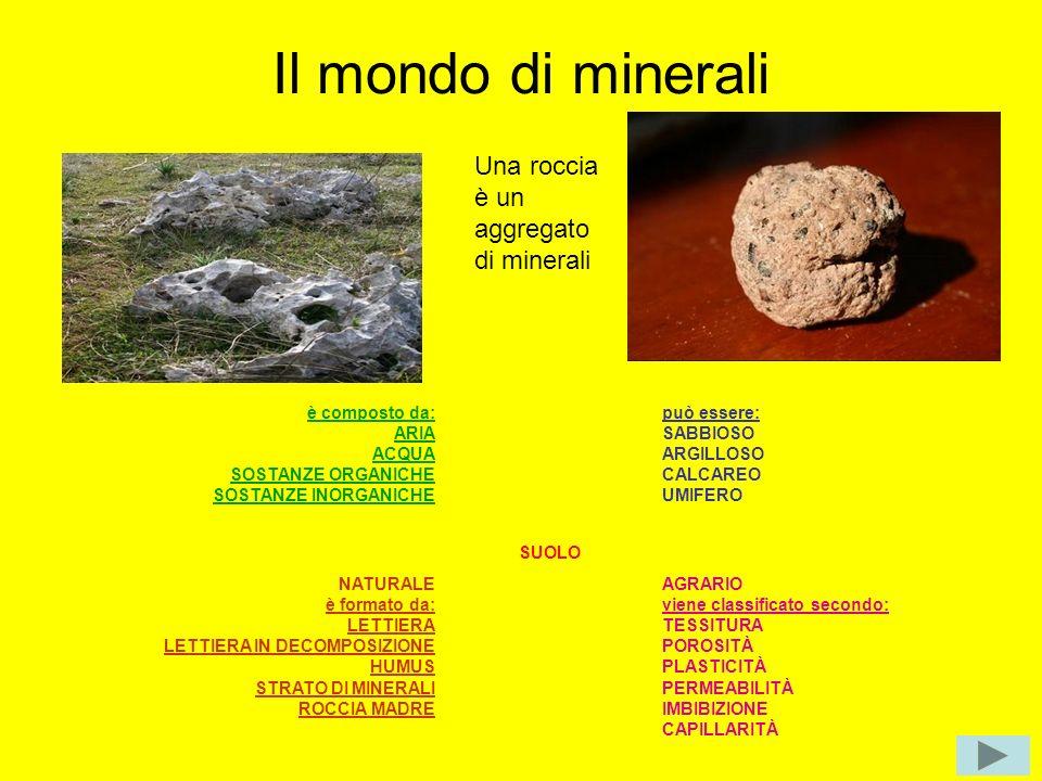 Il mondo di minerali è composto da: ARIA ACQUA SOSTANZE ORGANICHE SOSTANZE INORGANICHE può essere: SABBIOSO ARGILLOSO CALCAREO UMIFERO SUOLO NATURALE