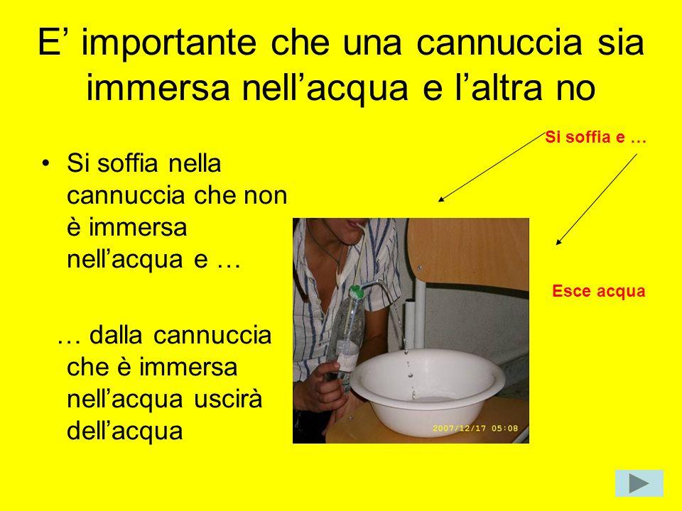 E importante che una cannuccia sia immersa nellacqua e laltra no Si soffia nella cannuccia che non è immersa nellacqua e … … dalla cannuccia che è imm