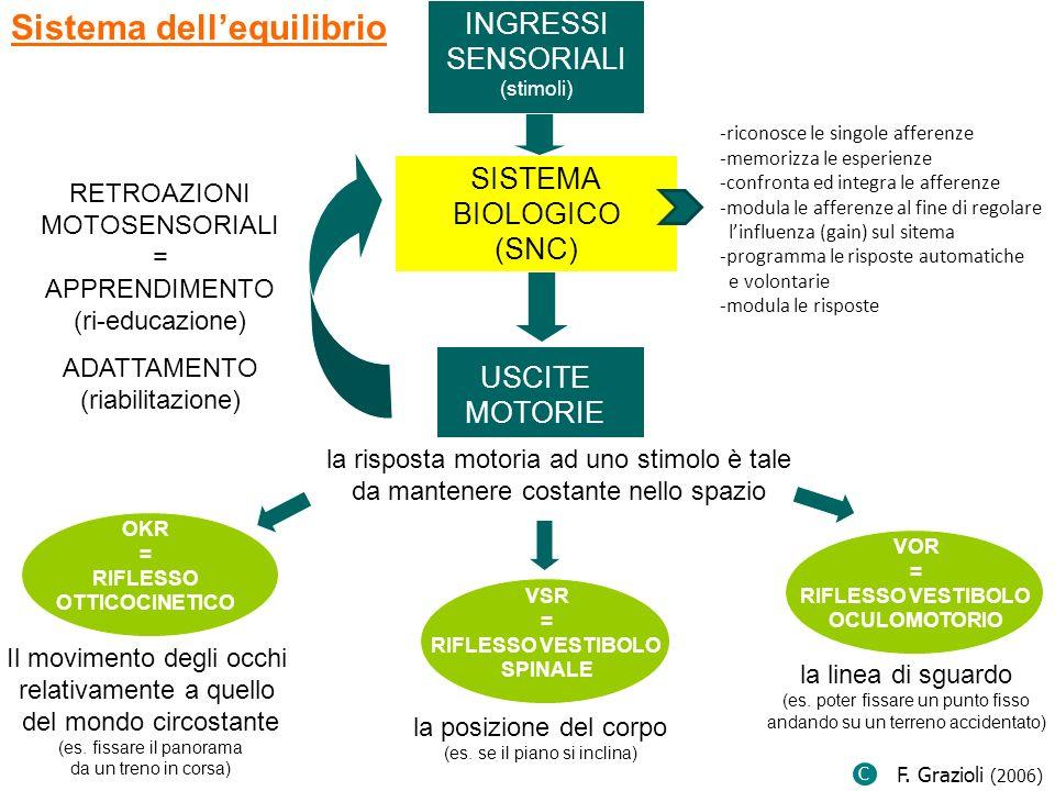 INGRESSI SENSORIALI (stimoli) Sistema dellequilibrio SISTEMA BIOLOGICO (SNC) USCITE MOTORIE RETROAZIONI MOTOSENSORIALI = APPRENDIMENTO (ri-educazione)