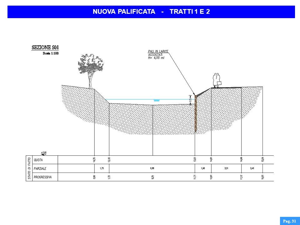 Pag. 31 NUOVA PALIFICATA - TRATTI 1 E 2