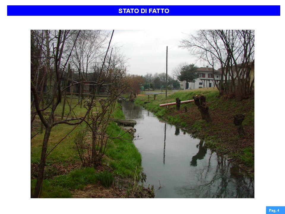 STATO DI FATTO Pag. 5
