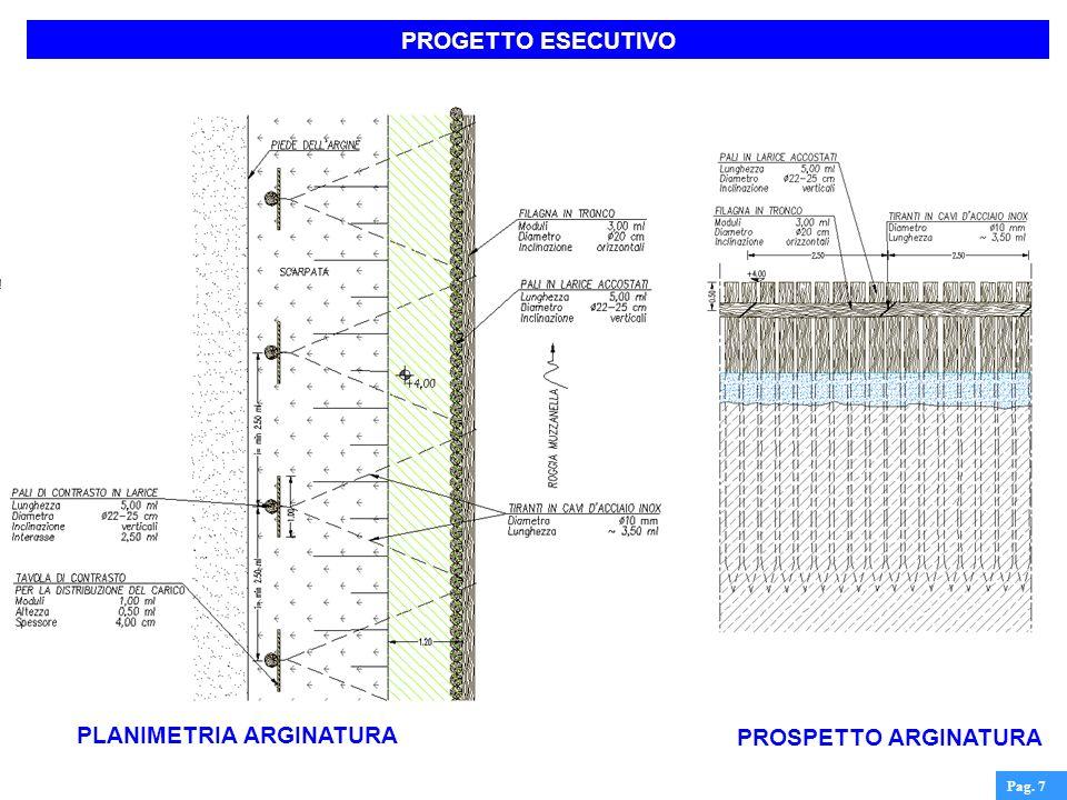 PROGETTO ESECUTIVO Pag. 7 PLANIMETRIA ARGINATURA PROSPETTO ARGINATURA