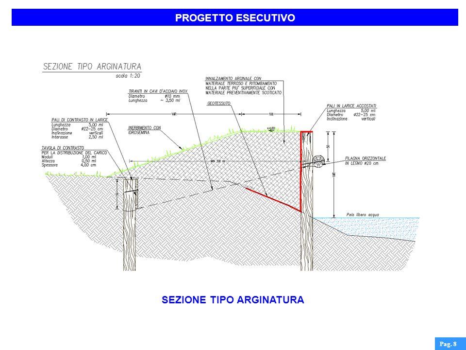 FASE REALIZZATIVA Pag. 19 Realizzazione della scala di accesso allalveo