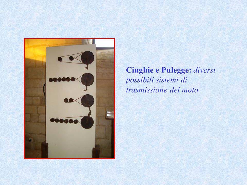 Cinghie e Pulegge: diversi possibili sistemi di trasmissione del moto.