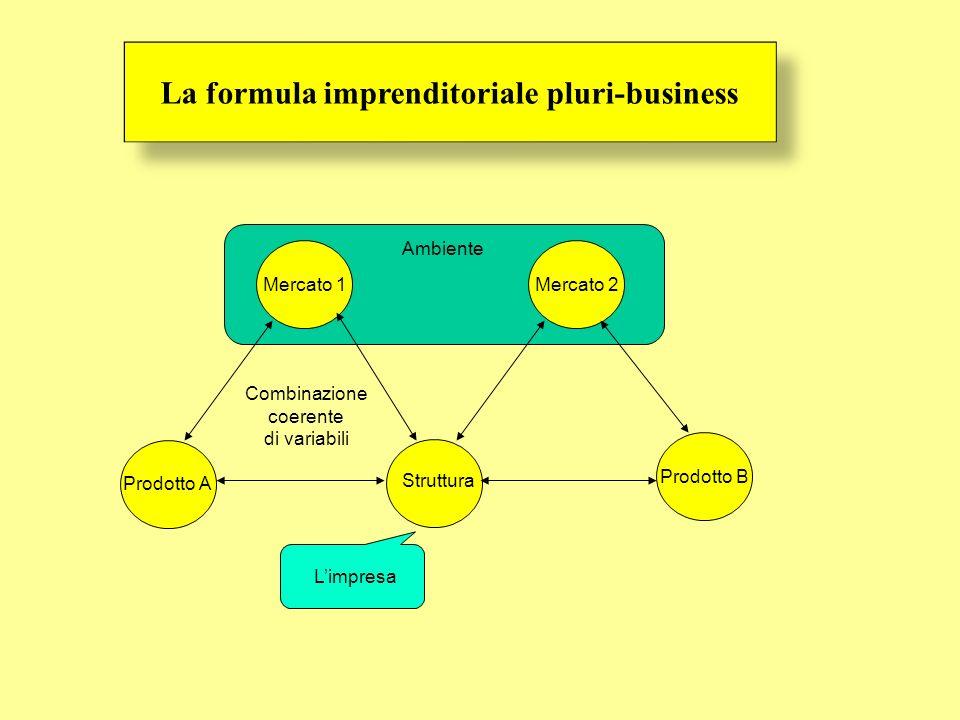 Ambiente La formula imprenditoriale pluri-business Mercato 1 Struttura Prodotto A Combinazione coerente di variabili Mercato 2 Prodotto B Limpresa
