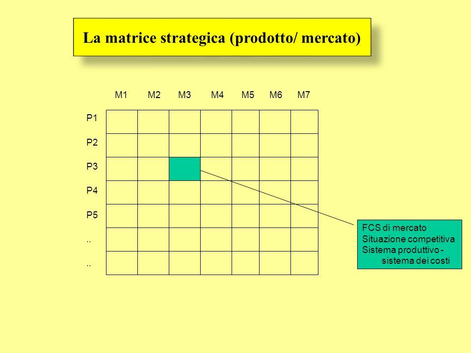 P1 P2 P3 P4 P5.. M1 M2 M3 M4 M5 M6 M7 FCS di mercato Situazione competitiva Sistema produttivo - sistema dei costi La matrice strategica (prodotto/ me