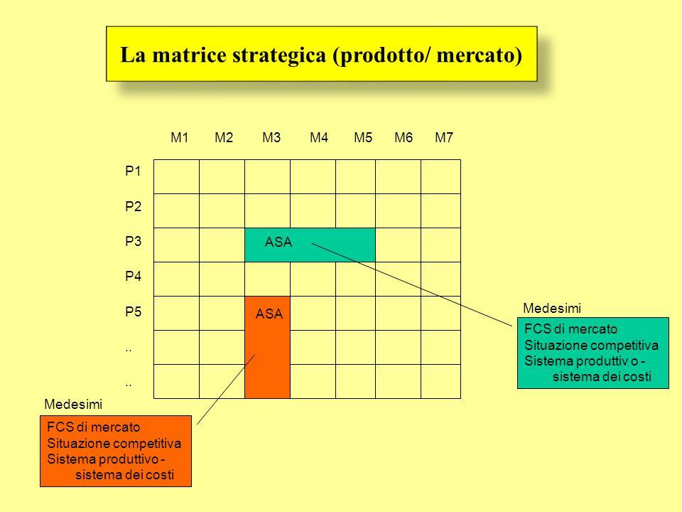 P1 P2 P3 P4 P5.. M1 M2 M3 M4 M5 M6 M7 Medesimi FCS di mercato Situazione competitiva Sistema produttiv o - sistema dei costi ASA FCS di mercato Situaz