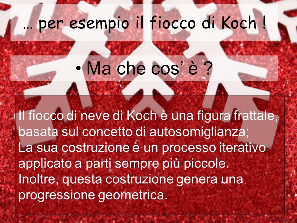 Stadio 5 della costruzione del fiocco di neve di Koch Stadio 5 della costruzione dellanti-fiocco di neve di Koch Ecco il quinto stadio della costruzione… Nella mente dei matematici la procedura si ripete allinfinito…