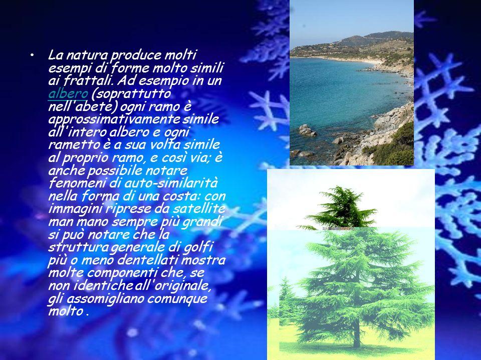 La natura produce molti esempi di forme molto simili ai frattali. Ad esempio in un albero (soprattutto nell'abete) ogni ramo è approssimativamente sim