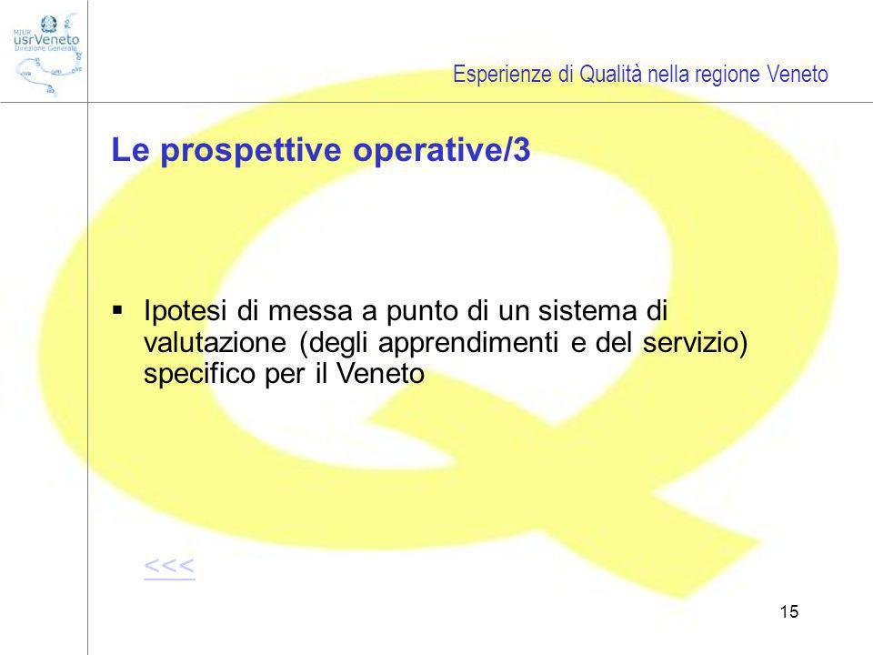 15 Ipotesi di messa a punto di un sistema di valutazione (degli apprendimenti e del servizio) specifico per il Veneto <<< Esperienze di Qualità nella regione Veneto Le prospettive operative/3