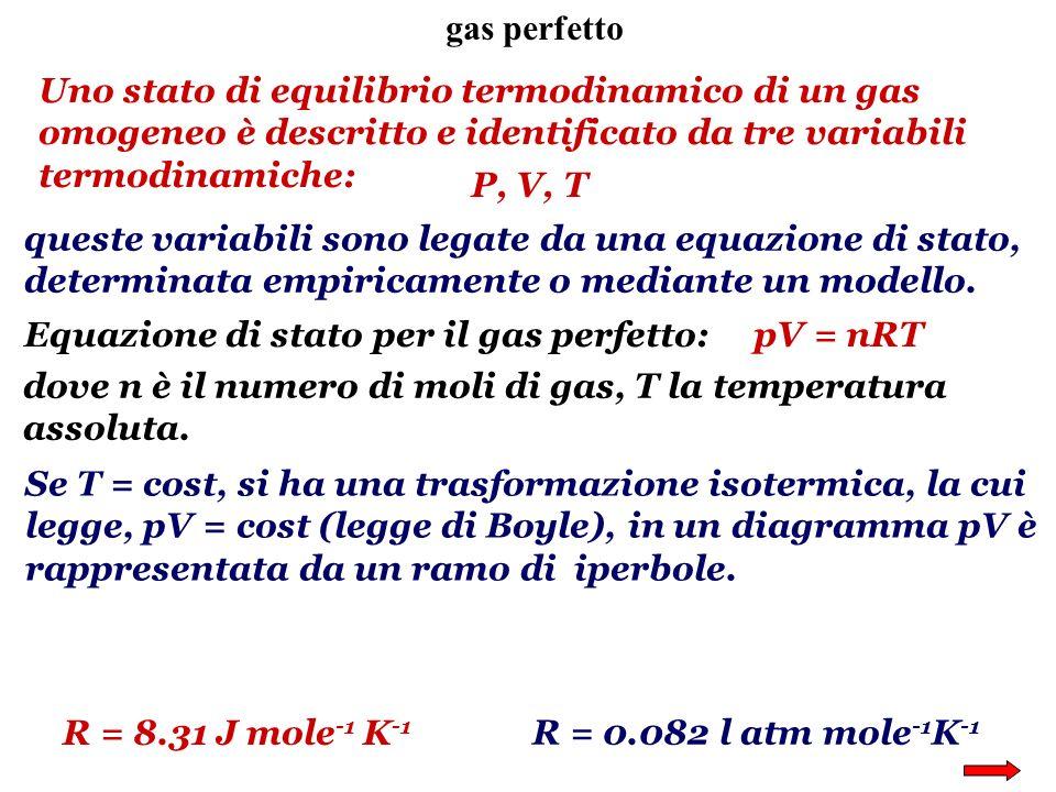 gas perfetto Uno stato di equilibrio termodinamico di un gas omogeneo è descritto e identificato da tre variabili termodinamiche: P, V, T queste varia