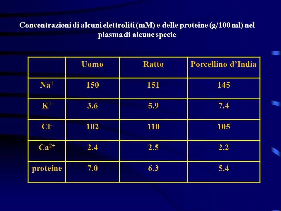Concentrazioni di alcuni elettroliti (mM) e delle proteine (g/100 ml) nel plasma di alcune specie UomoRattoPorcellino dIndia Na + 150151145 K+K+ 3.65.