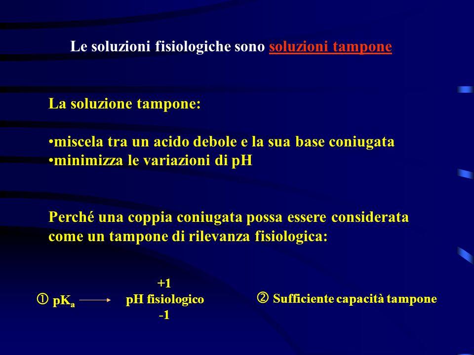 pK a +1 pH fisiologico Sufficiente capacità tampone Le soluzioni fisiologiche sono soluzioni tampone La soluzione tampone: miscela tra un acido debole