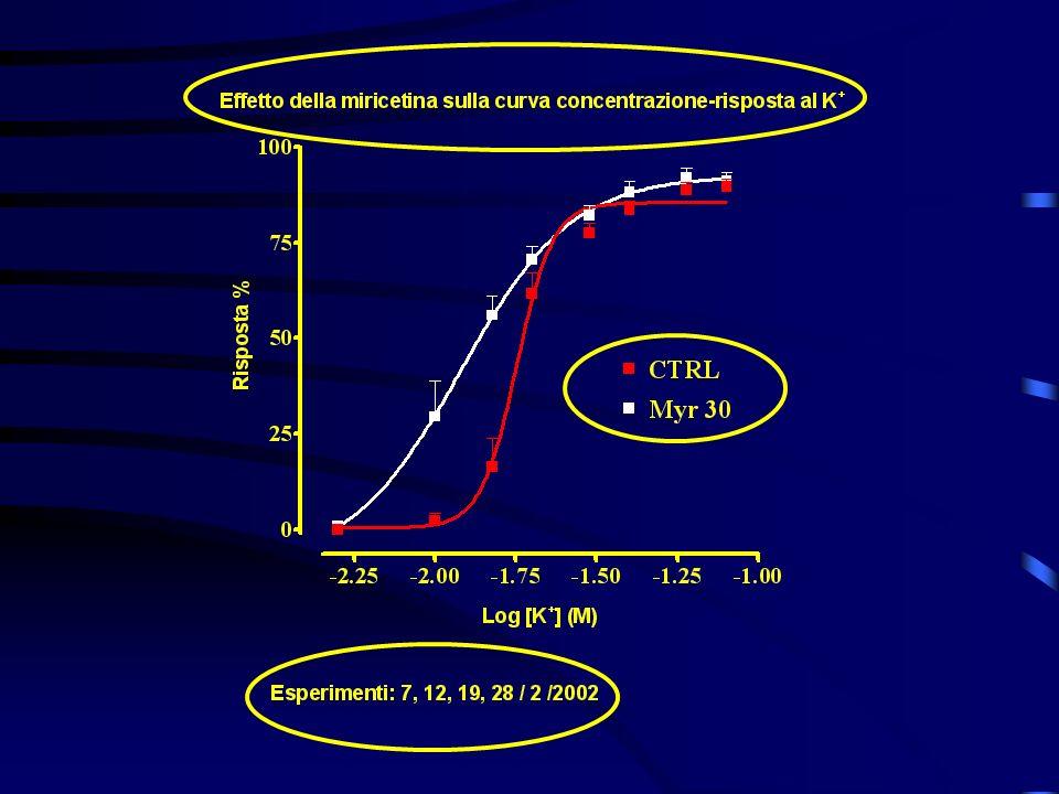 Il pH Importante per la vitalità e funzionalità del tessuto Determina il grado di ionizzazione delle molecole AH BOH A - H + B + OH - Attività Inattività Enzimi Livelli di [Ca 2+ ] i Contrattilità muscolare Meccanismi osmotici Ecc.