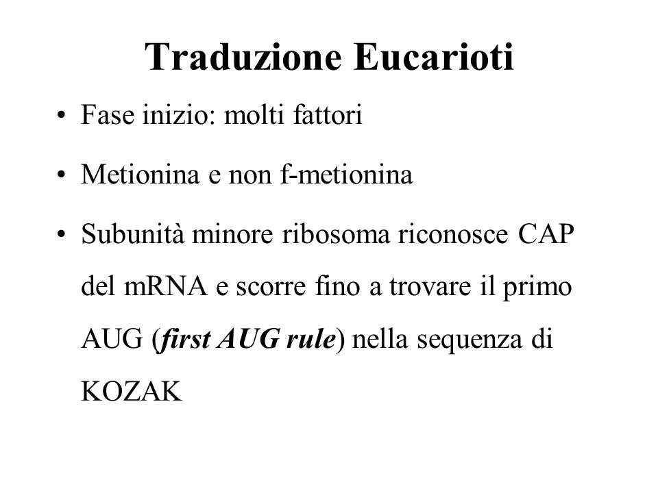 Traduzione Eucarioti Fase inizio: molti fattori Metionina e non f-metionina Subunità minore ribosoma riconosce CAP del mRNA e scorre fino a trovare il primo AUG (first AUG rule) nella sequenza di KOZAK