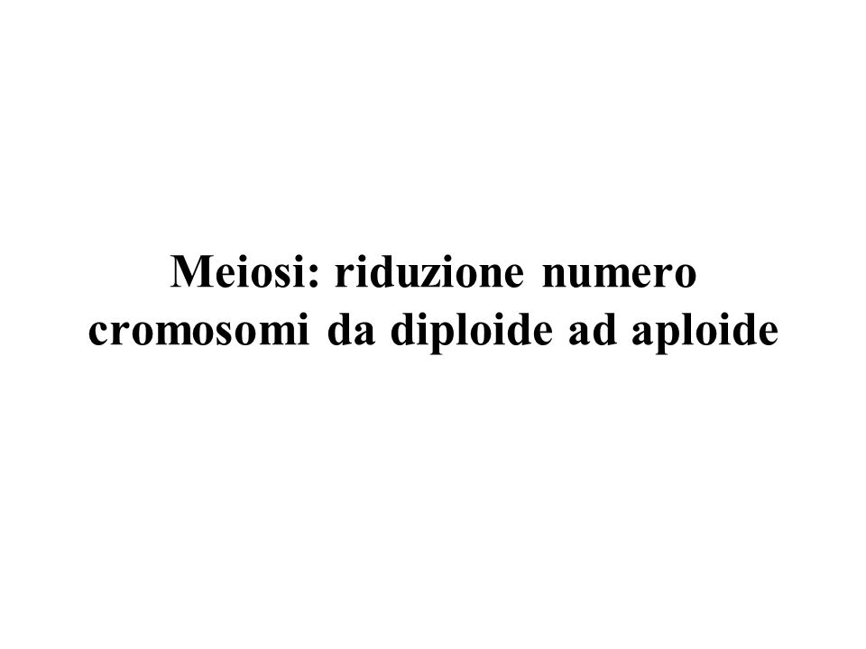 Meiosi: riduzione numero cromosomi da diploide ad aploide
