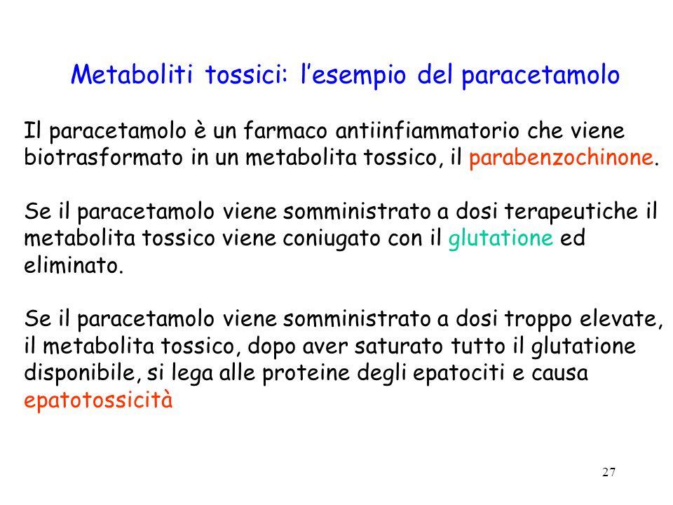 27 Metaboliti tossici: lesempio del paracetamolo Il paracetamolo è un farmaco antiinfiammatorio che viene biotrasformato in un metabolita tossico, il