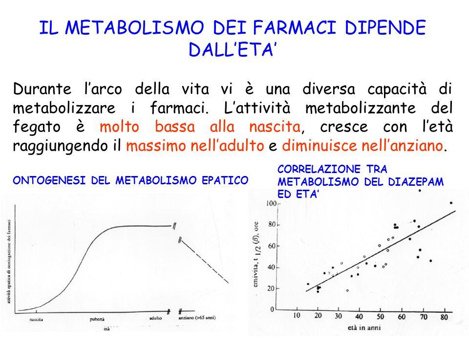 33 IL METABOLISMO DEI FARMACI DIPENDE DALLETA Durante larco della vita vi è una diversa capacità di metabolizzare i farmaci. Lattività metabolizzante