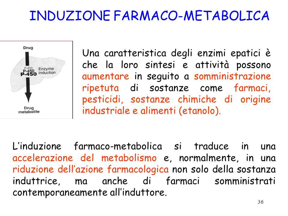 36 INDUZIONE FARMACO-METABOLICA Una caratteristica degli enzimi epatici è che la loro sintesi e attività possono aumentare in seguito a somministrazio