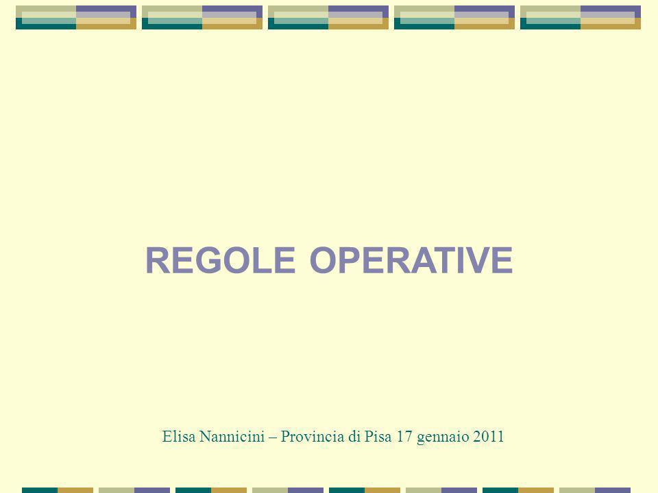 REGOLE OPERATIVE Elisa Nannicini – Provincia di Pisa 17 gennaio 2011