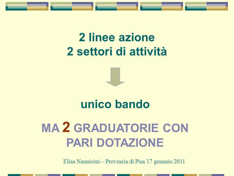 2 linee azione 2 settori di attività Elisa Nannicini – Provincia di Pisa 17 gennaio 2011 unico bando MA 2 GRADUATORIE CON PARI DOTAZIONE