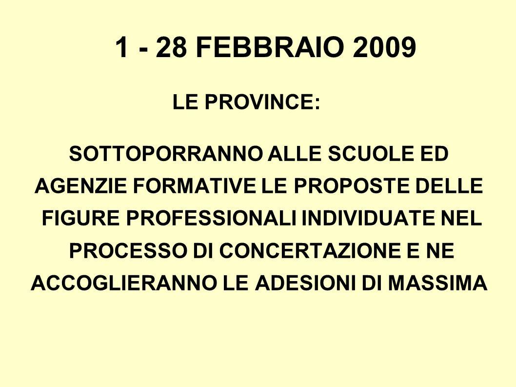 1 - 28 FEBBRAIO 2009 LE PROVINCE: SOTTOPORRANNO ALLE SCUOLE ED AGENZIE FORMATIVE LE PROPOSTE DELLE FIGURE PROFESSIONALI INDIVIDUATE NEL PROCESSO DI CONCERTAZIONE E NE ACCOGLIERANNO LE ADESIONI DI MASSIMA