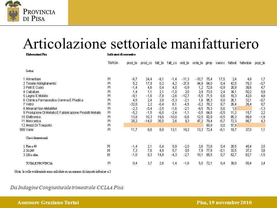 Assessore Graziano TuriniPisa, 19 novembre 2010 Articolazione settoriale manifatturiero Da Indagine Congiunturale trimestrale CCIAA Pisa