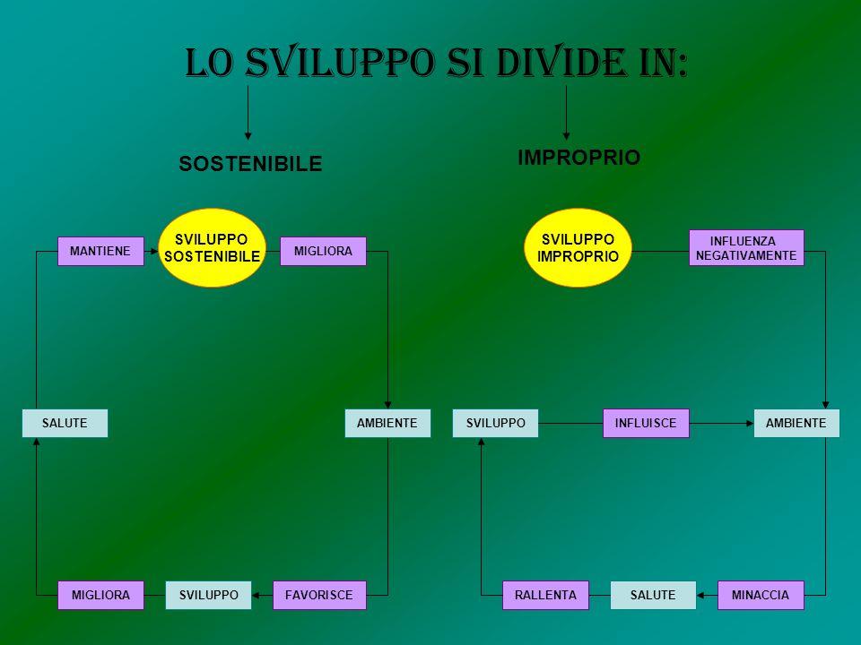 SVILUPPO SOSTENIBILE MANTIENE SALUTE MIGLIORASVILUPPOFAVORISCE AMBIENTE MIGLIORA SVILUPPO IMPROPRIO INFLUENZA NEGATIVAMENTE AMBIENTE MINACCIASALUTERALLENTA SVILUPPOINFLUISCE Lo sviluppo si divide in: SOSTENIBILE IMPROPRIO