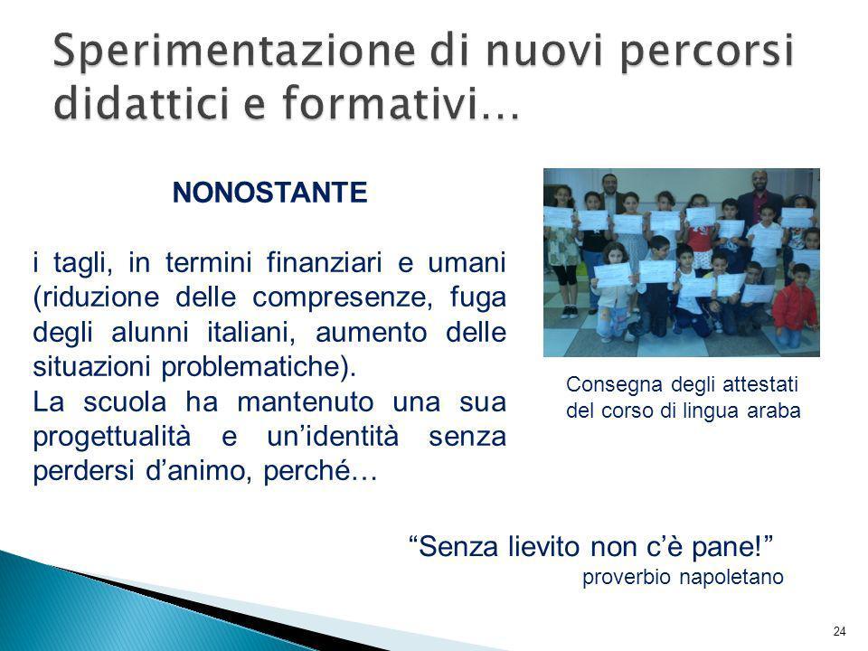 NONOSTANTE i tagli, in termini finanziari e umani (riduzione delle compresenze, fuga degli alunni italiani, aumento delle situazioni problematiche). L