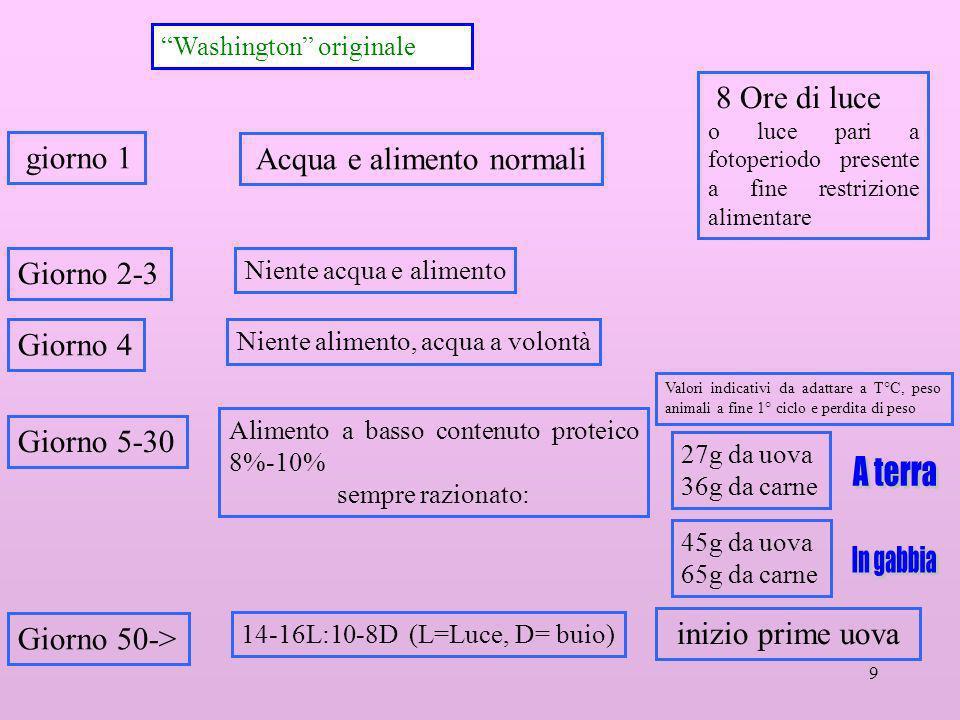 9 Washington originale Giorno 5-30 14-16L:10-8D (L=Luce, D= buio) 8 Ore di luce o luce pari a fotoperiodo presente a fine restrizione alimentare Giorn