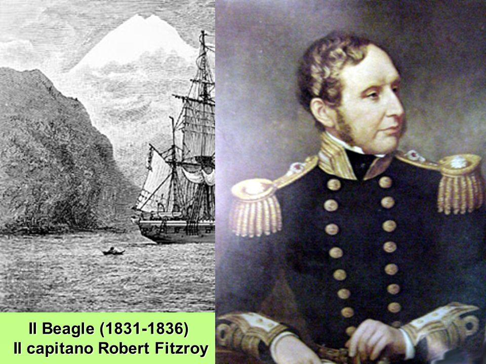 Il Beagle (1831-1836) Il capitano Robert Fitzroy