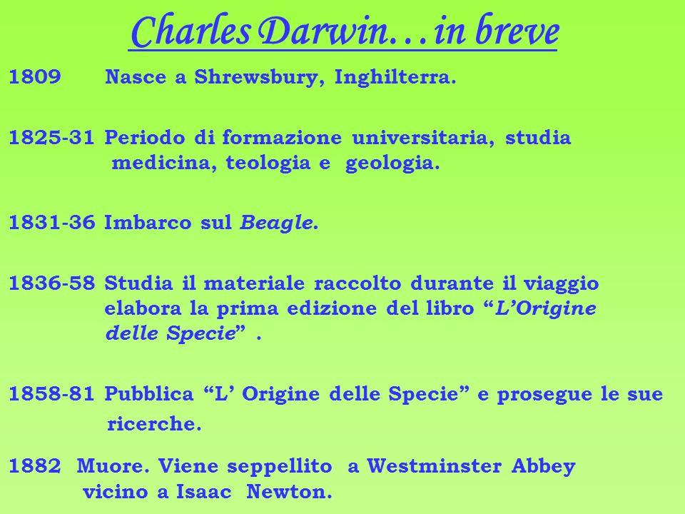 Charles Darwin…in breve 1809 Nasce a Shrewsbury, Inghilterra.