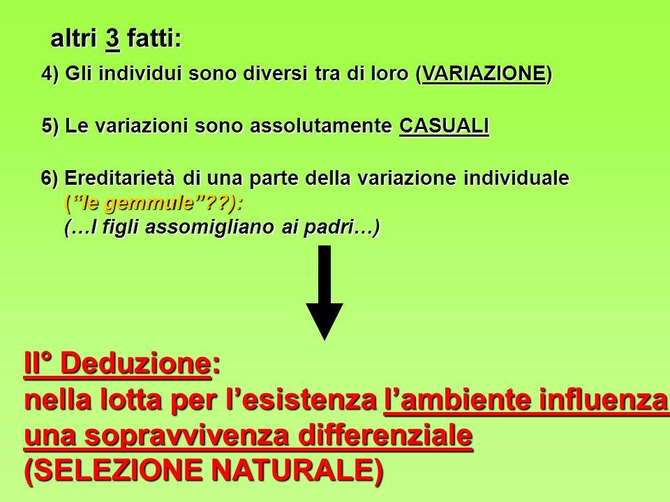 4) Gli individui sono diversi tra di loro (VARIAZIONE) 6) Ereditarietà di una parte della variazione individuale (le gemmule??): (le gemmule??): (…I figli assomigliano ai padri…) (…I figli assomigliano ai padri…) 5) Le variazioni sono assolutamente CASUALI II° Deduzione: nella lotta per lesistenza lambiente influenza una sopravvivenza differenziale (SELEZIONE NATURALE) altri 3 fatti: