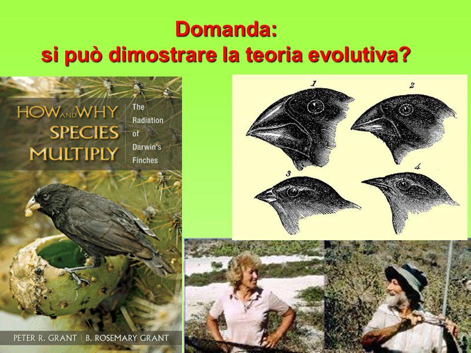 Domanda: si può dimostrare la teoria evolutiva?