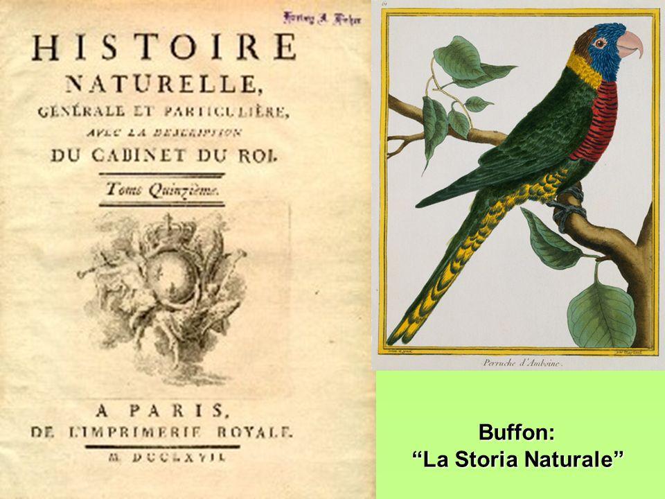 Buffon: La Storia Naturale