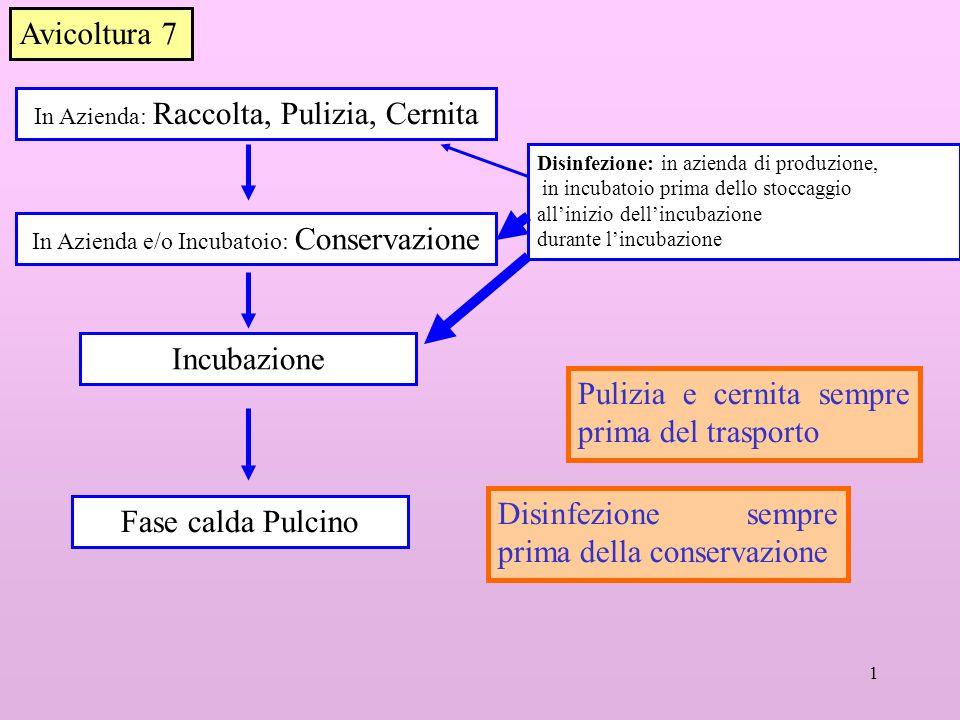 1 In Azienda: Raccolta, Pulizia, Cernita Disinfezione: in azienda di produzione, in incubatoio prima dello stoccaggio allinizio dellincubazione durant