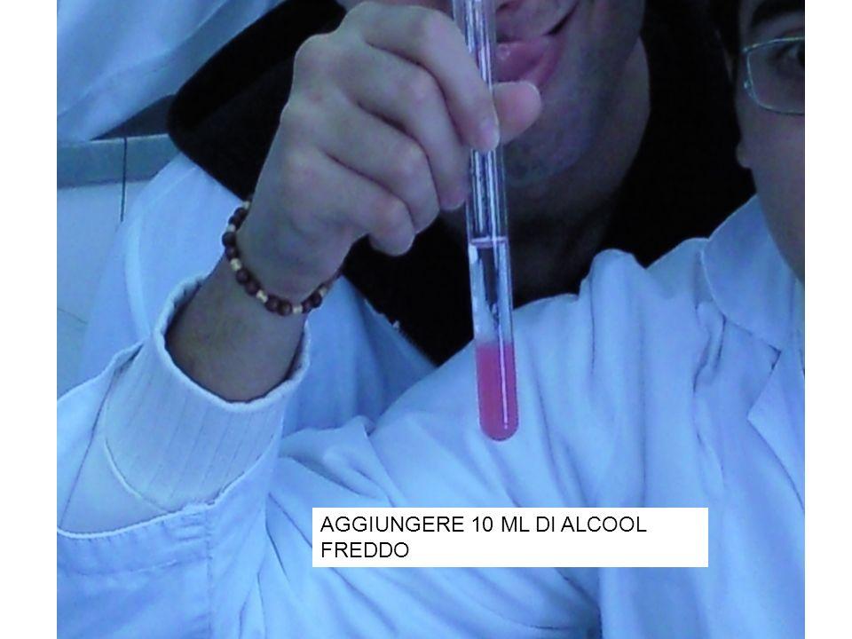 AGGIUNGERE 10 ML DI ALCOOL FREDDO