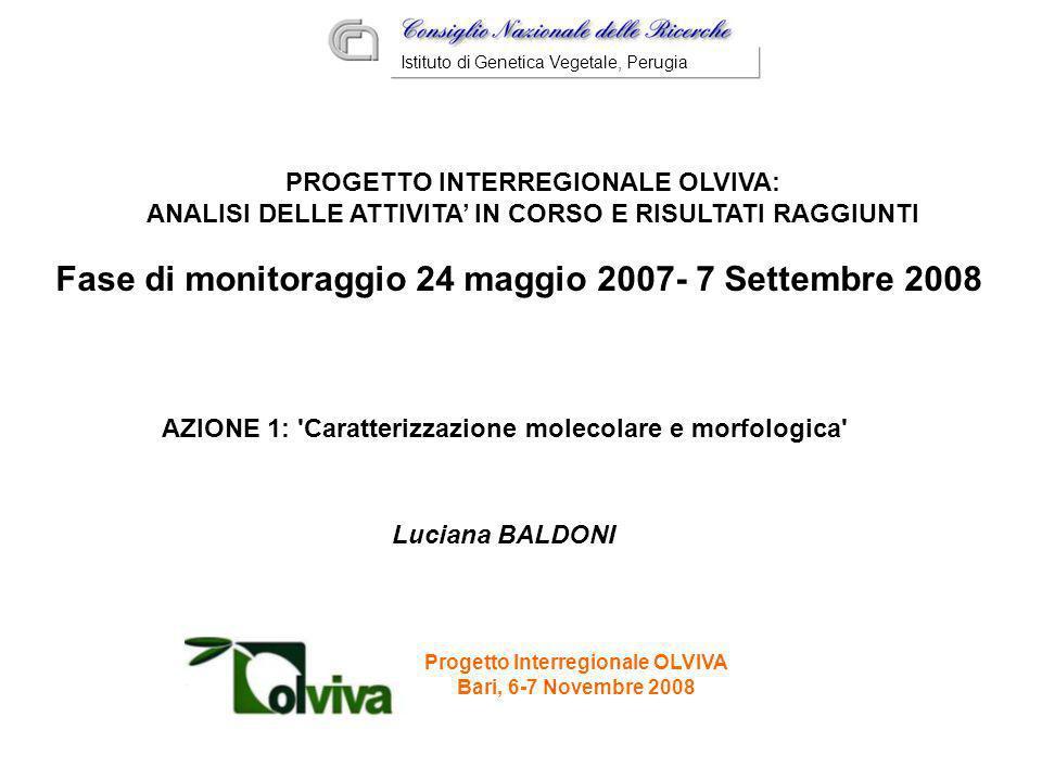 Progetto Interregionale OLVIVA Bari, 6-7 Novembre 2008 Luciana BALDONI Istituto di Genetica Vegetale, Perugia PROGETTO INTERREGIONALE OLVIVA: ANALISI