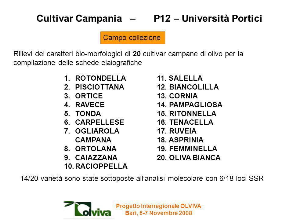 Cultivar Campania – P12 – Università Portici Rilievi dei caratteri bio-morfologici di 20 cultivar campane di olivo per la compilazione delle schede el