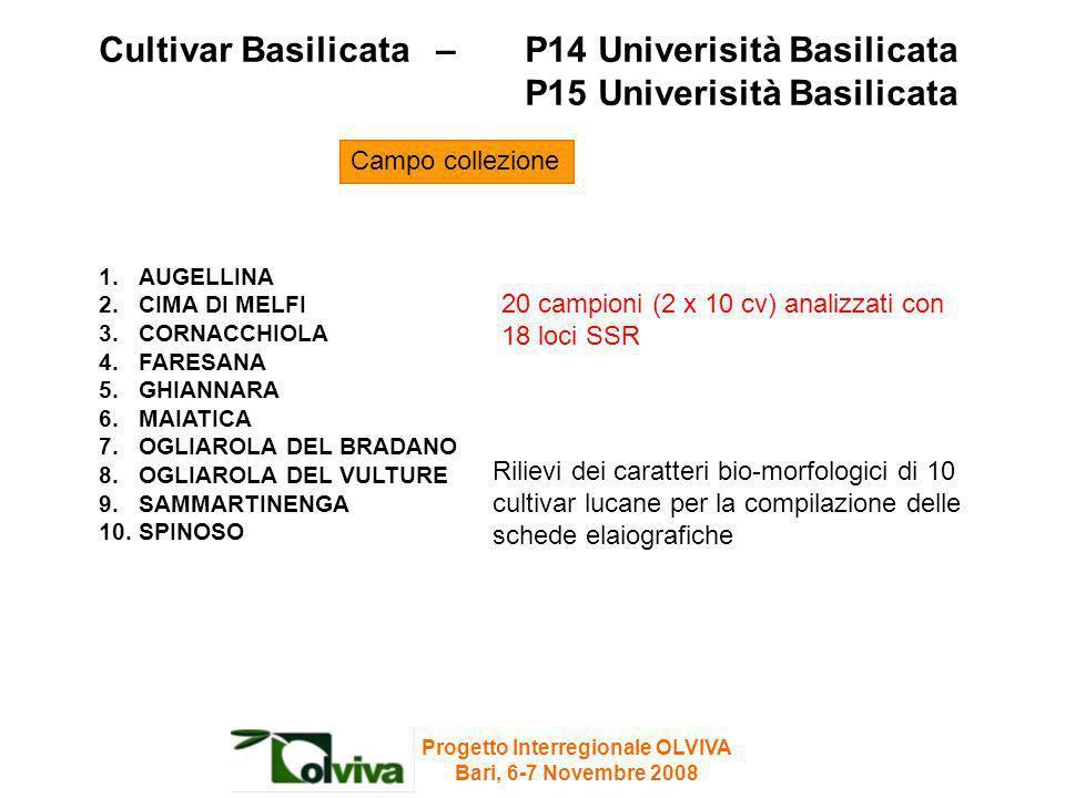 Cultivar Basilicata – P14 Univerisità Basilicata P15 Univerisità Basilicata Rilievi dei caratteri bio-morfologici di 10 cultivar lucane per la compila
