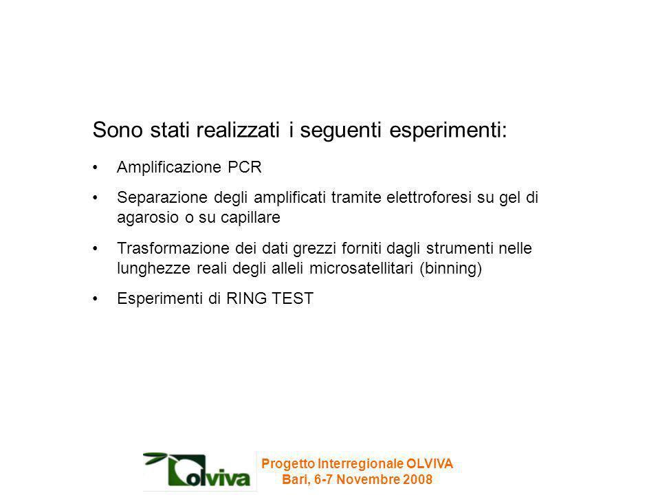 Sono stati realizzati i seguenti esperimenti: Amplificazione PCR Separazione degli amplificati tramite elettroforesi su gel di agarosio o su capillare