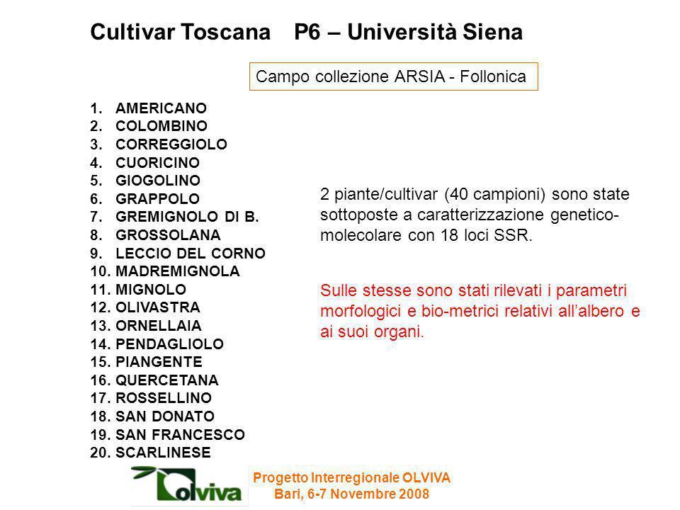 Cultivar Toscana P6 – Università Siena 1.AMERICANO 2.COLOMBINO 3.CORREGGIOLO 4.CUORICINO 5.GIOGOLINO 6.GRAPPOLO 7.GREMIGNOLO DI B. 8.GROSSOLANA 9.LECC