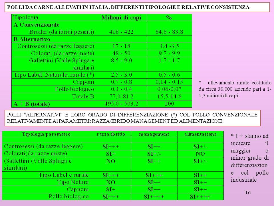 16 POLLI DA CARNE ALLEVATI IN ITALIA, DIFFERENTI TIPOLOGIE E RELATIVE CONSISTENZA P0LLI