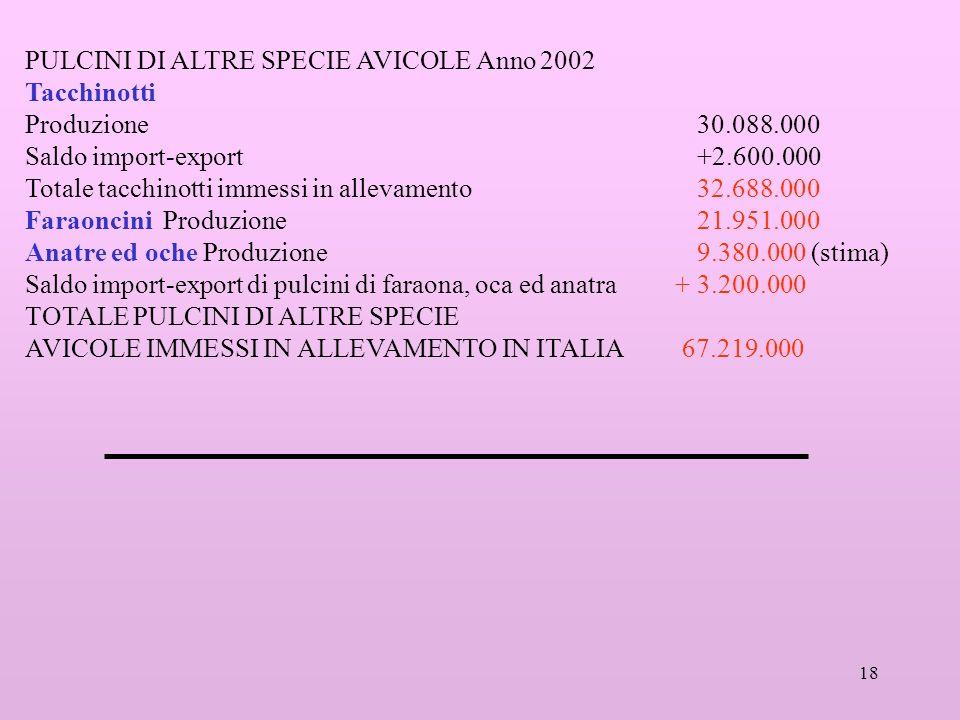 18 PULCINI DI ALTRE SPECIE AVICOLE Anno 2002 Tacchinotti Produzione 30.088.000 Saldo import-export +2.600.000 Totale tacchinotti immessi in allevament