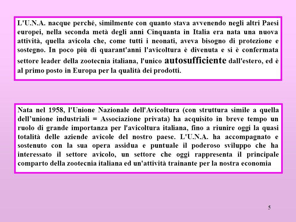 5 L'U.N.A. nacque perché, similmente con quanto stava avvenendo negli altri Paesi europei, nella seconda metà degli anni Cinquanta in Italia era nata