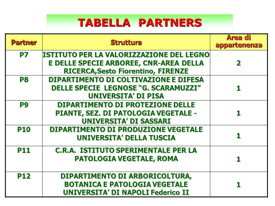 PartnerStruttura Area di appartenenza P7 ISTITUTO PER LA VALORIZZAZIONE DEL LEGNO E DELLE SPECIE ARBOREE, CNR-AREA DELLA RICERCA,Sesto Fiorentino, FIR