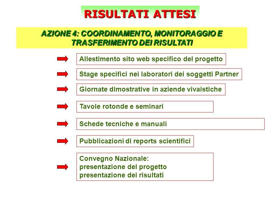 RISULTATI ATTESI AZIONE 4: COORDINAMENTO, MONITORAGGIO E TRASFERIMENTO DEI RISULTATI Allestimento sito web specifico del progetto Stage specifici nei