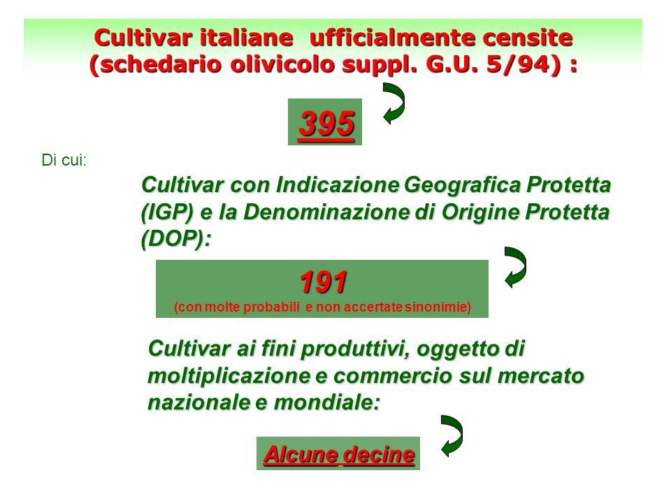 191 (con molte probabili e non accertate sinonimie) Cultivar italiane ufficialmente censite (schedario olivicolo suppl. G.U. 5/94) : 395 Di cui: Culti