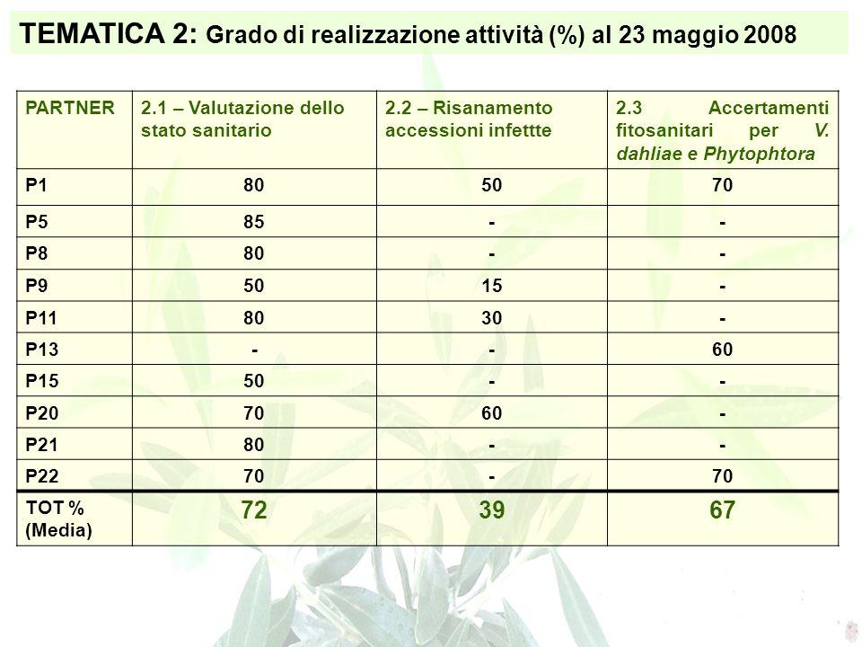 TEMATICA 2: Grado di realizzazione attività (%) al 23 maggio 2008 PARTNER2.1 – Valutazione dello stato sanitario 2.2 – Risanamento accessioni infettte 2.3 Accertamenti fitosanitari per V.